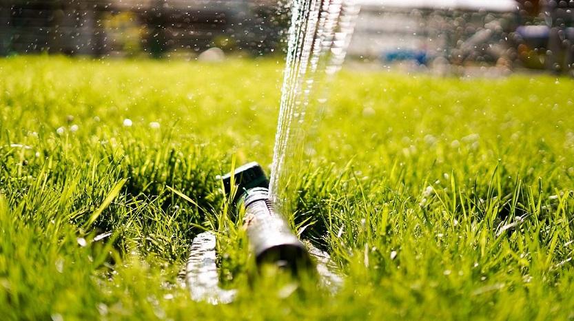 En este momento estás viendo Cómo mantener tu jardín con riego automático
